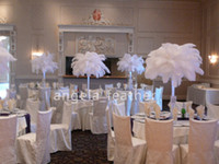 Wholesale FEDEX inch Ostrich Feather Plume White AAA quality for Wedding centerpieces table decoration