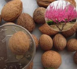 Цветковые деревья Онлайн-Цветения миндаля 1 пачка Бесплатная доставка 10 семян легко посадить за все годы семена деревьев