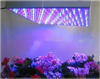 plant grow lights - Led Grow Lamp LED Hydroponic Plant Grow Light Panel Red Blue W LED Plant Grow Lights lm LEDs Panel Lights V Freeshipping