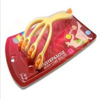 other   10pcs Plastic ball full-body fairload slimming essential oil meridiarns brush mini massage device 4558