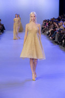 Reference Images Crew Organza Elie Saab Couture Spring 2014 Sheer Neck Jewel Long Sleeve Light Gold Tulle Knee Length Cocktail Party Dresses Full with Beading New Arrival
