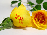 Wholesale 2014 most popular new updated and flower printer fllower printg machiine