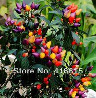 bell pepper flowers - 100 Seeds Wonder Rare MULTI COLOR HOT PEPPER SEEDS GREEN FOOD HOT BELL PEPPER Potted Ornamental Bonsai