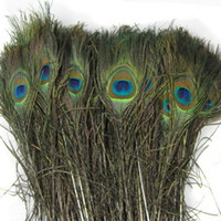 Wholesale Feather Peacock Tails quot quot Tail Feathers Fan Peacock Feathers Plume