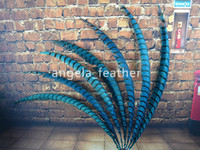 Wholesale inch cm Blue Pheasant Tail Feather Lady Amherst side tails pheasant feather for Halloween decor