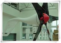 wind power - 300w hyacinth wind generator full power windmill wind turbine high quality CE ROHS ISO9001 VDC VAC VDC VAC