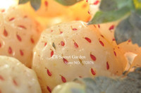 Fruit Seeds strawberry  YY -Farm easy grow fruit seeds 120 pcs rare white strawberry seeds four seasons sowing plant garden supplies free shipping