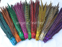 Pheasant craft supplies - Multi Colors Dyed Loose Pheasant Tail Feathers inches cm For Craft Supplies