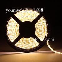 Wholesale Super Bright m SMD led m LED Strip Light Waterproof IP65 Flexiable LED Cool White Pure White Warm White V