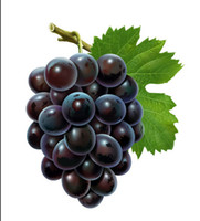 Wholesale pic Grape seed oho juicy thin high yield sweet and delicious