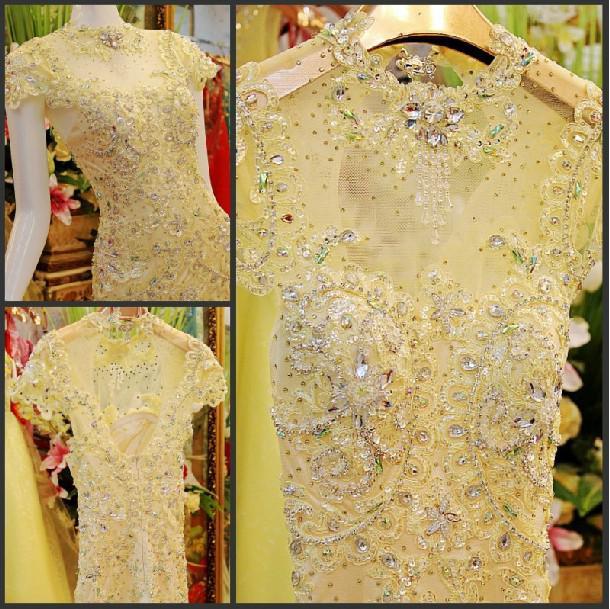 2014 Fashion Elegant Luxury Sheer Short Sleeve Backless