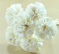 Wholesale 10pcs Dia cm Handmade White Cockscomb Natrual Sola Flower with Rattan Sticks for Reed Diffuser Fragrance Incense Volatilizer ZH0404