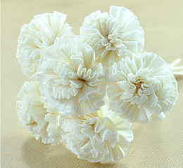Wholesale 10pcs Dia cm Handmade White Cockscomb Natrual Sola Flower with Rattan Sticks for Reed Diffuser ZH0404