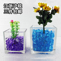 Wholesale Hydroponic plants succulents square glass vase transparent cylinder side pots Scindapsus aquarium water lily narcissus flower pot