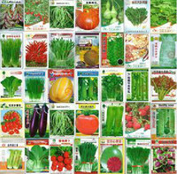 Wholesale 600 seeds and retail kinds of different vegetable seed family potted balcony garden four seasons planting
