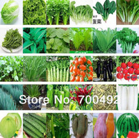 balcony sets - 30 packs set total more than seeds kinds of different vegetable seed family potted balcony garden fruit seeds four seasons planting