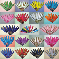 Wholesale DIY Feather Natural Goose Pointers Craft Feathers Mixed Colors