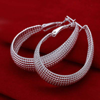 Wholesale Sterling Silver Earring Silver Fashion Jewelry Web Hoop Earring For Women SMTE064