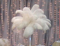 Wholesale 16 inch Ostrich Feather Plume white Wedding centerpieces table centerpiece