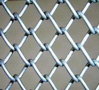Wholesale stainless chain link mesh pvc chain link mesh mesh for fence shenglongxin supply so beatiful and so quality