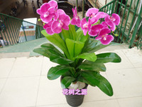 Cheap High artificial plants artificial flower plastic artificial flower decoration flower l small orchid small bonsai artificial tree