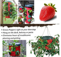 Wholesale Topsy turvy holes Strawberry tomato pepper planters Home grown essential goods Vegetable planting bags hanging
