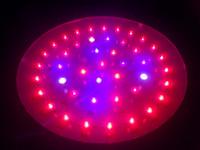 Wholesale W x3W hydropnoics led grow light plant UFO lamp Red660nm blue for VEG amp Flowering