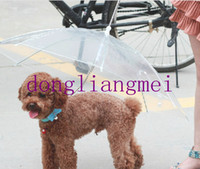 Wholesale 20pc Hot pet dog protective rain umbrella fashion sunny umbrella have a tring for walk the dog J127