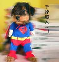Wholesale 1404c cute pet dog cat superman clothing Dog clothing pet change coat