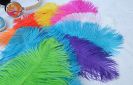 wholesale 100pcs lot 12-14inch Ostrich Feather White,Royal bule,Black,Turquoise,Pink,Yellow,Purple Red,Orange