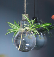 Wholesale 2pcs set light bulb air planter terrarium hanging glass vase hydroponics vase fashion home furnishing decoration succulents