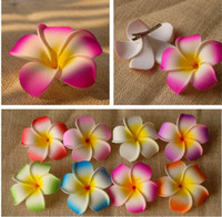 Wholesale New product Inch Hawaiian Plumeria Foam Flowers Hair Clips colors mixed