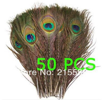 Wholesale 50pcs Natural Peacock Feathers Feather for Decoration about Inches ZO65