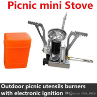 Wholesale Outdoor Picnic Cookout BBQ Gas Burner Portable Camping Mini Steel Stove Case Cooker Camping Gas Stove