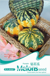 Wholesale 3 original packs total Seeds Diamond Shape Pumpkin Seeds Cucurbita vegetable seeds