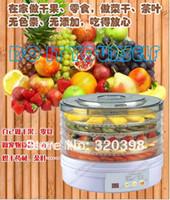 Wholesale Auto Food Dehydrator Fruit Herbs Dryer Kitchen Appliance Fruit Dehydrator FDRY02