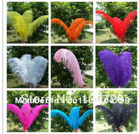 Wholesale Cheap ostrich feather inches cm Mixed color Ostrich plumage ostrich plume