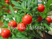Herb Seeds   Free Shipping 6 pcs Indian ginseng seeds improve sleep function,enhance immunity, anti-fatigue