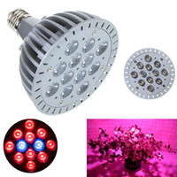 Wholesale 12W E27 LED Bulb Grow Lamp LEDs blue amp red LED Plant Grow Lamp Light Bulbs for Flowering Plant and hydroponics