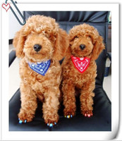 Wholesale New PU Cloth Material Bow Tie Dog Accessories Pet Triangle Scarf Animals Collar Leads Supplies Necklace Teddy