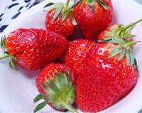 Cheap Fruit Seeds strawberry seeds Best   100 seeds