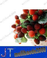 Christmas artificial fruit - fruit decoration flower artificial flower artificial fruit paddle strawberry photo props MYY1030