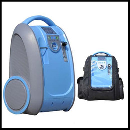 Wholesale Factory supply L Medical Portable Adjustable Oxygen Concentrator Machine with AC110 V Plug and Rechargeable Li Battery and Car Adapter