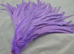 Free shipping Wholesale 100pcs lot 12-14inch(30-35cm) light purple Rooster tail feather coque tail feather for Costumes