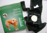 al por mayor dog underwear-Mujer perro de mascota Perrito del perrito PU Sanitaria Pantalones cortos Panty Protección Rayado pañal ropa interior lindo para perras en temporada CW0139