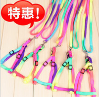 Wholesale 2014new hot cakes colors pet colour chest straps HAULING CABLE Flashing dog collar necklace cat collar Pet Supplies
