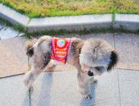 Fall/Winter dog diapers - Cute Dog Diaper Pants Male Dog In Season Dog Pet Sanitary Random Color Size V3558