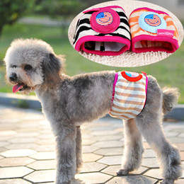 Wholesale Cute Male Dog Baby Doggie Diapers Pants Sanitary for Dogs Pets Supples Products XS S M L XL Random Color