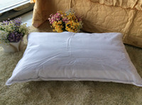 Wholesale Walmart Sams Product Natural White Goose Feather Down Pillow and Buckwheat Shell Pillow soft washable Pillow