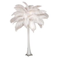 Wholesale Wholesale_100 a inch White Ostrich Feather Plume for Wedding Centerpieces table decoration